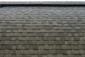 Roof Shingles professional